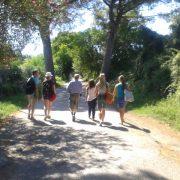 Taalcursus excursie